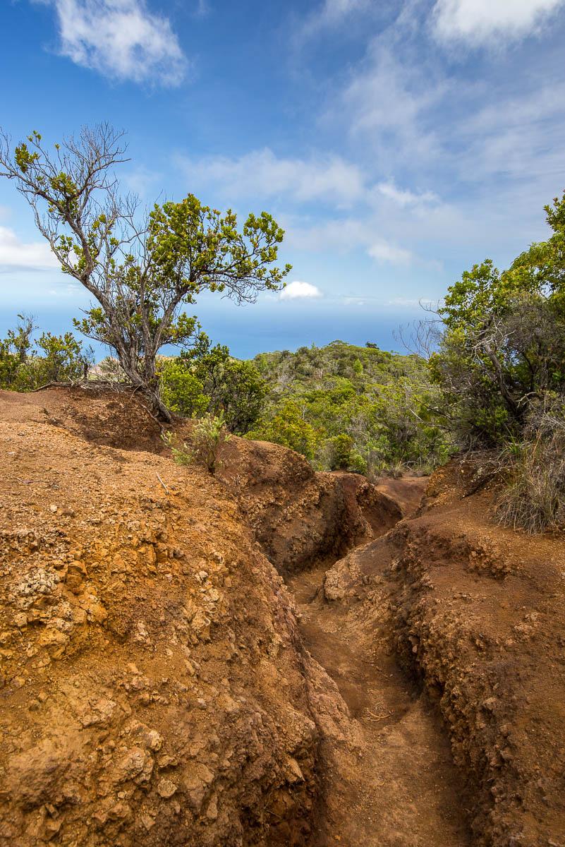 Nualolo trail deep ruts