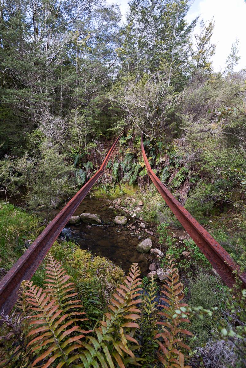 Charming Creek Walk tracks