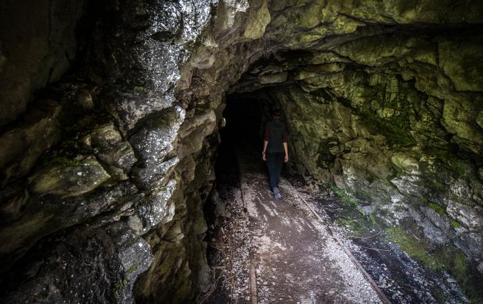 Charming Creek Walk tunnel