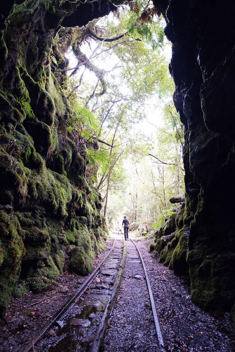 Charming Creek Walk tunnel tracks The Verandah, Upper Ngakawau Gorge